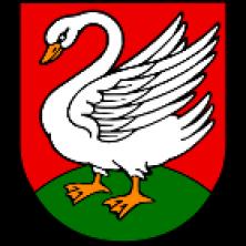 Gmina Borkowice